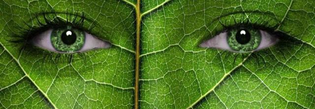May we be able to see again through the eyes of Gaia, our mother Earth... Bizim anne Dunya, Gaia gözleriyle tekrar görmek mümkün olabilir...