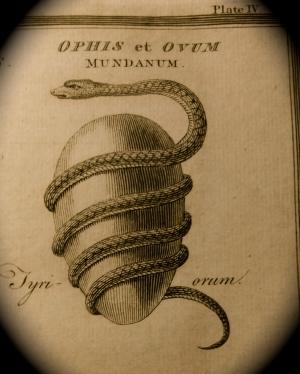 Orphic Egg-01