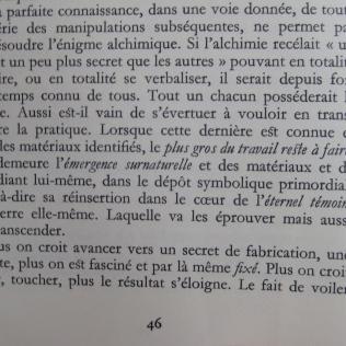 François Trojani_Emergence Surnaturelle-01
