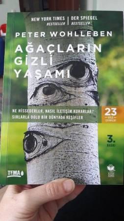 ağaçların gizli yaşamı_kitap